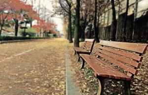 chair scenery summer abandon